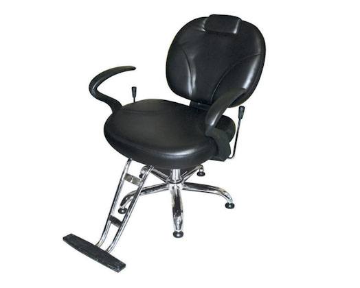 Super Professional Backwash Chair